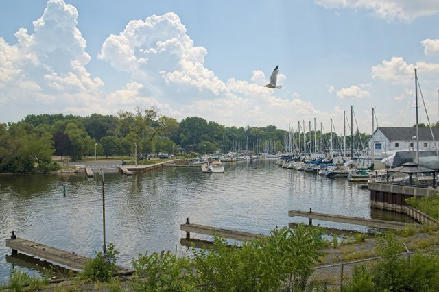 Bronte Creek  - Bronte Harbour Yacht Club