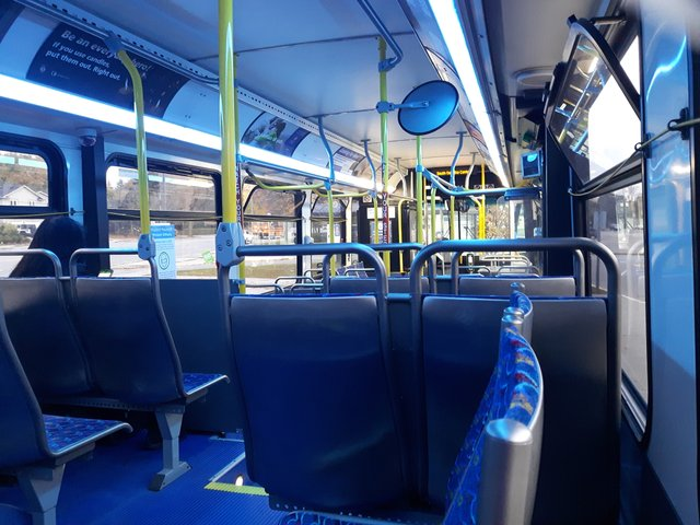 Nearly empty buses