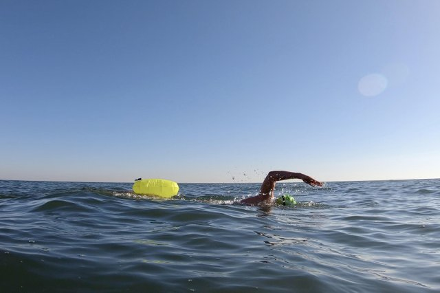 Open water swimmer in Lake Ontario