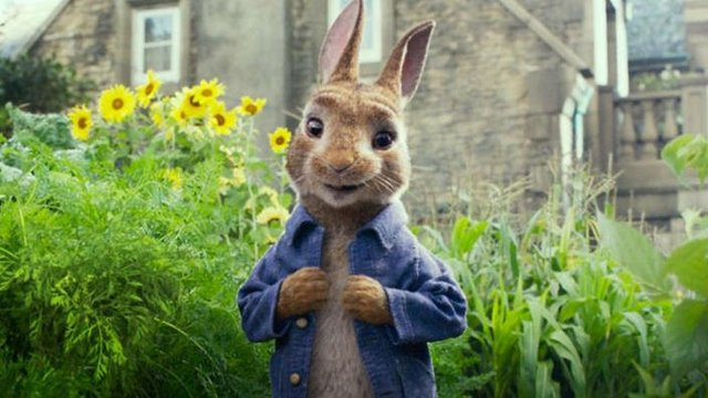 Review for the new family comedy PETER RABBIT, opening in theatres February 9th 2018.