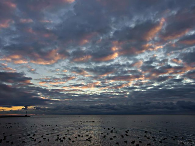 Oakville: Wednesday, July 12/17, Sunrise, Lake Ontario, Kerr Street, Brian Gray Photography, Oakville Ontario,