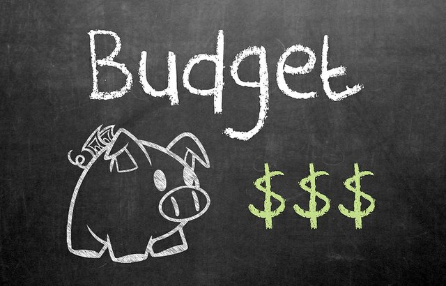 "2018 Oakville budget Chair ,Chalk drawing of pig with 3 dollar signs and the word ""budget"""