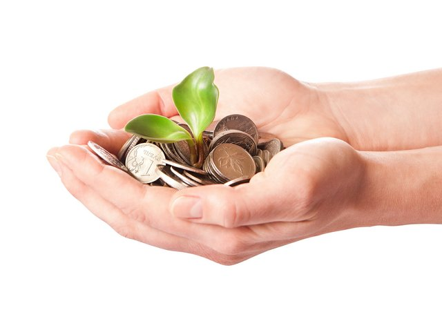 Cupped hands holding money with plant