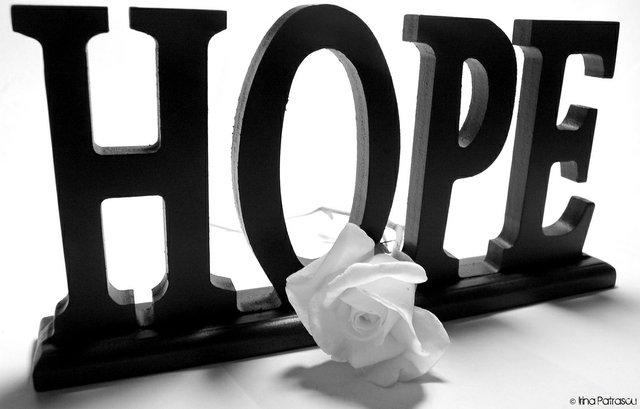 Text of HOPE and white rose