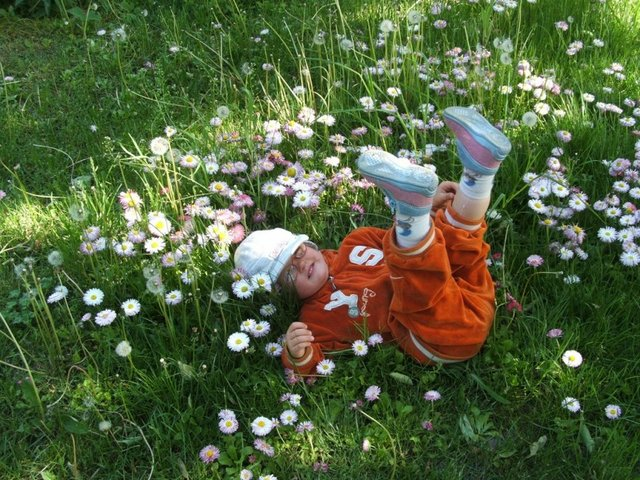 child lying down in a field of daisies