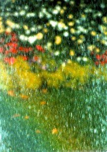 abstract of field with poppies and daisies