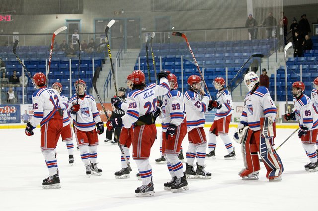 Hockey players with their sticks in the air