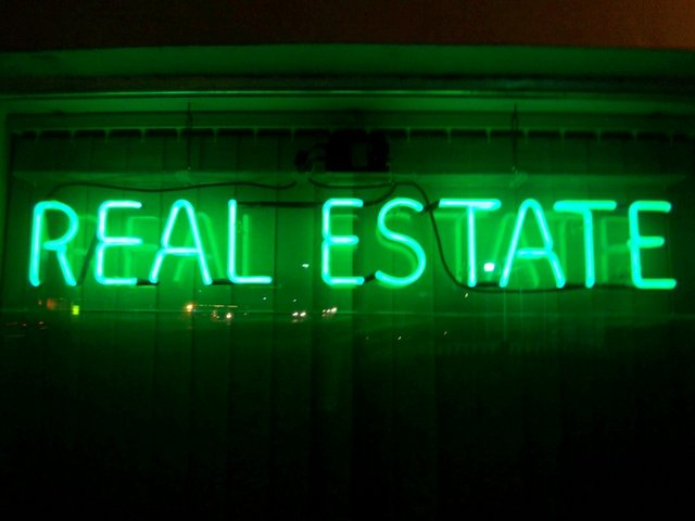 """Neon sign """"REAL ESTATE"""""""