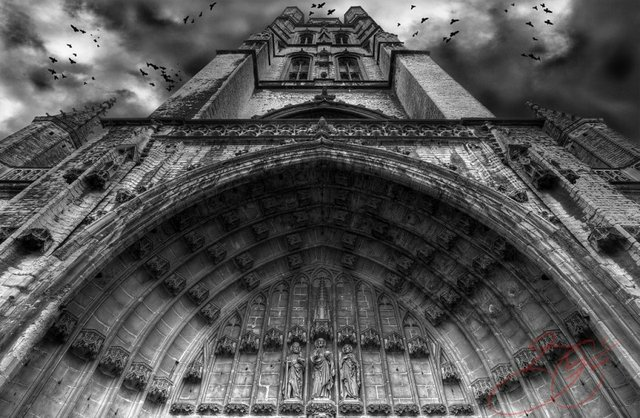 Gothic Cathedral b & w with crows passing overhead