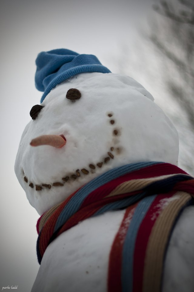 Snow Man with Scarf - Family Day, Town of Oakville, February 16 2015