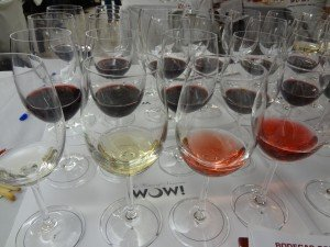 Wines of Navarra