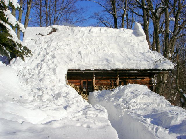 house buried under snow