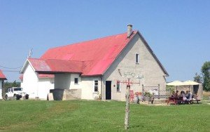 White Barn with Red Roof in Field