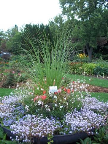 The Town of Oakville's All-America Selections trial gardens in Shell Park.