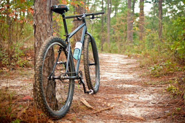 Bike on a trail