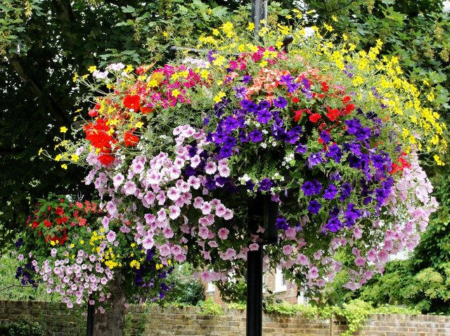 hanging outdoor flower basket