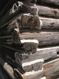 Close up of logs with mortar.