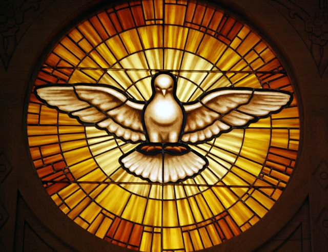 Dove in Flight - Stained Glass