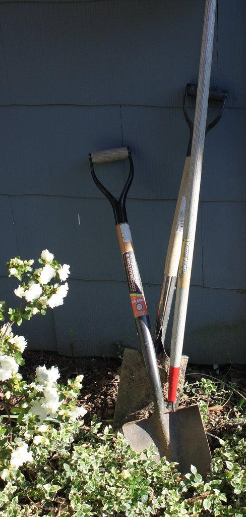 gardening tools in the sun