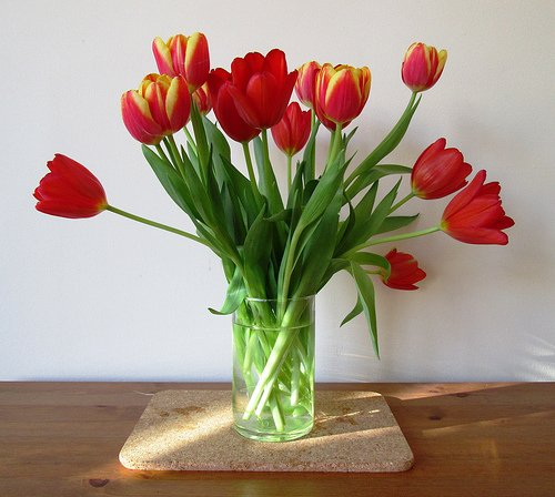 Tulips in a Vase,
