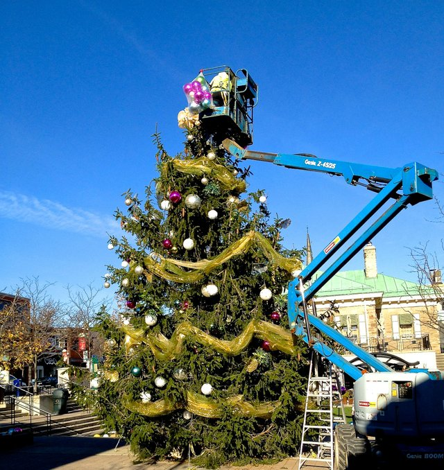 Christmas Tree Decorating in Oakville Town Square 2013